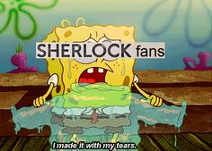 We made it for you Moffat… oh let's not forget the Doctor Who fandom and yes Sherlock fandom we have lost thing you will never understand and you there is also supernatural so i am have all this superwholock feelings Sherlock Fandom, Sherlock Holmes, Spongebob Memes, Spongebob Squarepants, Cartoon Memes, Shawn Mendes, First Day Of School Outfit, Mrs Hudson, Mendes Army