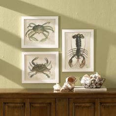 these would be perfect on my beach house wall