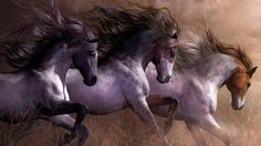horses art poster painting animal digital x hd wallpaper