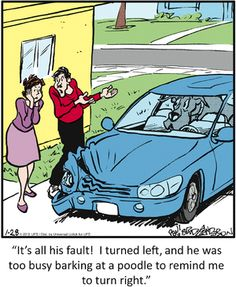 Today on Marmaduke - Comics by Brad Anderson Funny Animal Pictures, Funny Animals, Animal Pics, Dog Comics, Dead Man Walking, Calvin And Hobbes, Dog Memes, Funny Cartoons, Dog Life