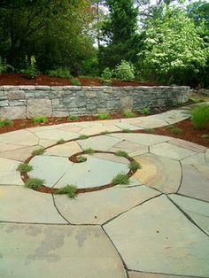 bones photos - eclectic - patio - portland - beautiful bones and purple stones