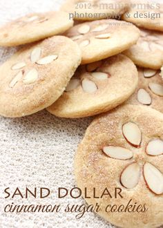 Sand Dollar Cinnamon Sugar Cookies OMG how cute is this? Sand dollar cinnamon sugar cookies - what a great idea for a beach or summer themed party! Köstliche Desserts, Delicious Desserts, Dessert Recipes, Yummy Food, Beach Themed Desserts, Beach Theme Snacks, Beach Treats, Beach Party Foods, Beach Theme Cakes
