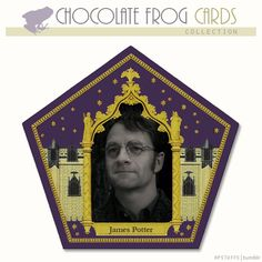 CHOCOLATE FROG CARDS, JAMES POTTER,