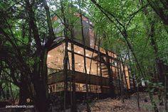 Vivienda aislada en el bosque de montaña - Arquitectura parraedwards.com
