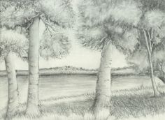 This landscape was drawn using all of nine of these Graphite Pencil Techniques.