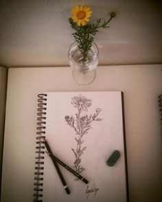 Piuturismo a Pianosa con redazione natura (with images) · piuturismo Maya, My Works, Drawing, Instagram Posts, Flowers, Sketches, Drawings, Royal Icing Flowers, Flower