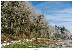 Frostige Zeit by Norbert Reimer on 500px