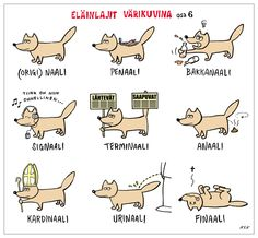 learn Finnish with the smile :D