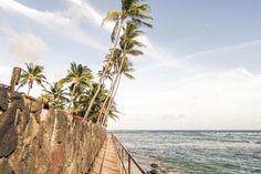 ★★★ Imperial Hawaii Resort at Waikiki, Honolulu, USA Queen Kapiolani Hotel, Honolulu Zoo, Hawaii Resorts, Waikiki Beach, Beach Walk, Best Location, Outdoor Pool, Swimming Pools, Castle