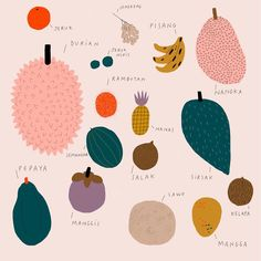Trying to learn Indonesian fruits names 🍌🍊🍈🍍🥭 Fruit Names, Fruit Illustration, Mixed Fruit, Food Packaging, Pomegranate, Berries, Kids Rugs, Learning, Prints