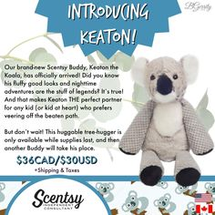 Introducing Scenty's newest buddy: KEATON the KOALA!! Available now while supplies last, comes with your choice of scent pak. Order today at www.smellarific.com.