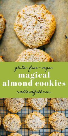 Chewy and sweet, these paleo almond cookies are completely addicting but deceptively healthy! Vegan, gluten-free, and paleo. Healthy Cookie Recipes, Healthy Cookies, Vegetarian Recipes, Paleo Dessert, Vegan Desserts, Dessert Recipes, Chocolate Chip Cookies, Grilling Recipes, Cooking Recipes