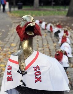Even the Boston Commons ducks are bearded