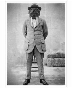 Walrus Man of John Keddie now on JUNIQE!