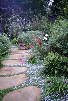pathway in small yard - Google Search