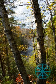 River Lookout by mtownphoto on Etsy