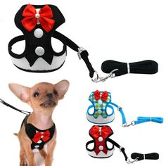 120cm Plush Small Dog Leash Walking Training Puppy Leash Cats Harness Collar For Dog Rabbit Teddy Chihuahua 20 Yet Not Vulgar Pet Products Dog Collars & Leads