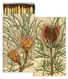 HomArt Protea Match Box >>> Check out this great product. Stove Accessories, Fireplace Accessories, South African Flowers, Candle Lighting, Protea Flower, Rock, Decoration, Fireplaces, Change