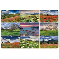 Summer Pet Mats for Food and Water by Ambesonne, Collage with Nine Different Square Framed Freshening Summer Landscapes Rural Nature, Rectangle Non-Slip Rubber Mat for Dogs and Cats, Multicolor *** Read more at the image link. (This is an affiliate link) #DogFeedingWateringSupplies
