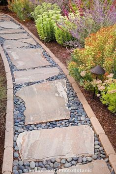 Stepping stone rock path in drought tolerant California garden Garden, ideas. pation, backyard, diy, vegetable, flower, herb, container, pallet, cottage, secret, outdoor, cool, for beginners, indoor, balcony, creative, country, countyard, veggie, cheap, design, lanscape, decking, home, decoration, beautifull, terrace, plants, house. #deckdesigner #deckdesigns #houseplants #gardenpaths #herbsgarden #flowergardendesignideas