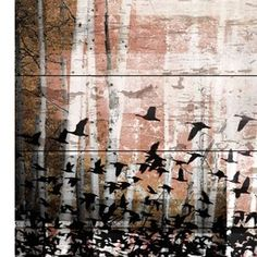 Parvez Taj Aspen Reclaimed White Barn Siding Wood Wall Art   2Modern Furniture & Lighting