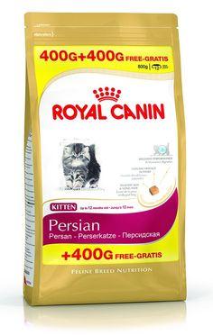 Корм сухой Роял Канин для котят Киттен Персиан 32 персидская, промоупаковка 400+400 г