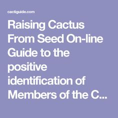 Raising Cactus From Seed  On-line Guide to the positive identification of Members of the Cactus Family