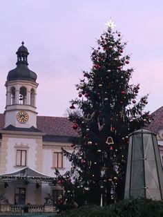 Regensburg market