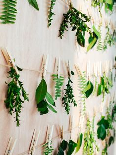 If using the real thing is more your style, take a cue from this stunning wall design by A Splendid Occasion. A simple clothesline pinned with fresh greenery or brilliant autumn leaves is bound to give your home a beautiful, outdoorsy vibe.