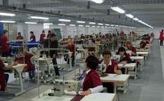 Фале нам софтвераши, текстилци... - http://www.vaseljenska.com/ekonomija/fale-nam-softverasi-tekstilci/