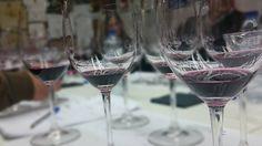 Cata de Rioja alavesa. Hay otros mundos deliciosos en la Rioja