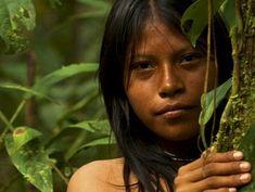 Rainforest Folks by chris5565 on DeviantArt