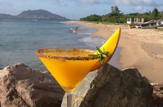 Rum Journal: Drink This Cocktail, Help Save Caribbean Sea Turtles - Click for recipe
