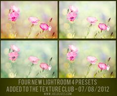 4lightroom