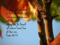 Psalm 130:7-8