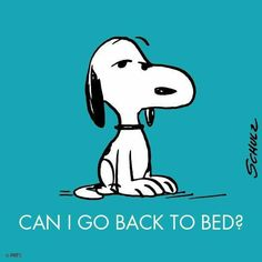 #pnts #schulz #snoopy #bed