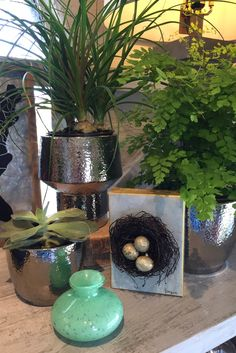 The change of seasons is a great reason to freshen up your home with some new decor pieces. Let The TreeHouse of Smyrna help liven up your space for spring!