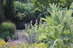 Discover the gardens of Fernando Martos in Landscapes with Signature   Free Landscape