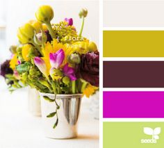 Design-seeds.com is a fantastic way to develop color schemes.