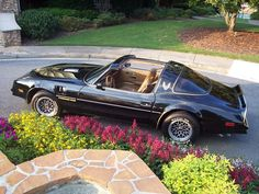 ABSOLUTELY GORGEOUS,  BLACK AND GOLD, BANDIT STYLED, 1978 PONTIAC TRANS AM http://www.Transam1979.com