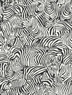Zebra Wallpaper | Design Studio: Design by Color