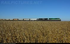 RailPictures.Net Photo: NS 8099 Norfolk Southern GE ES44AC at McComb, Ohio by BNEdward