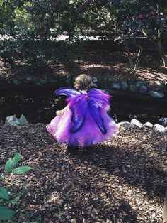 family playdate: los angeles (Descanso Gardens' Camelia Festival featuring Fairies.)