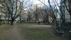 Small park Sidewalk, Trunks, Drift Wood, Walkway, Walkways, Pavement