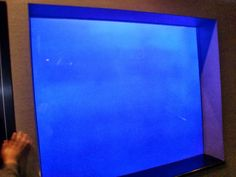かごしま水族館の「何も入っていない水槽」その展示の意図が深い..。