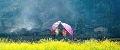صديقين كنا..تحت المطر