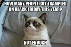 Funny pictures about Grumpy Cat is feeling poetic. Oh, and cool pics about Grumpy Cat is feeling poetic. Also, Grumpy Cat is feeling poetic. Grumpy Cat Quotes, Meme Grumpy Cat, Grumpy Kitty, Kitty Cats, Meme Comics, Funny Cats, Funny Animals, Funny Jokes, Funniest Animals