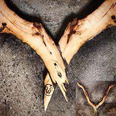 Geweldig Gewei 'Gewoon STOER'! Link in bio #gewei #interieur #hout #interiors #wood #antlers