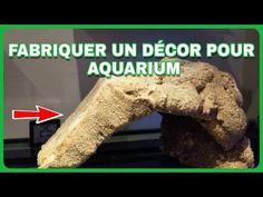 Mousse Expansive, Aquarium Terrarium, Decoration, Youtube, Projects, Decor, Decorations, Decorating, Youtubers