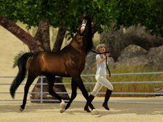 Sims 3 Realistic Horse | Artius